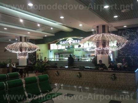 «Крошка-картошка» в аэропорту Домодедово