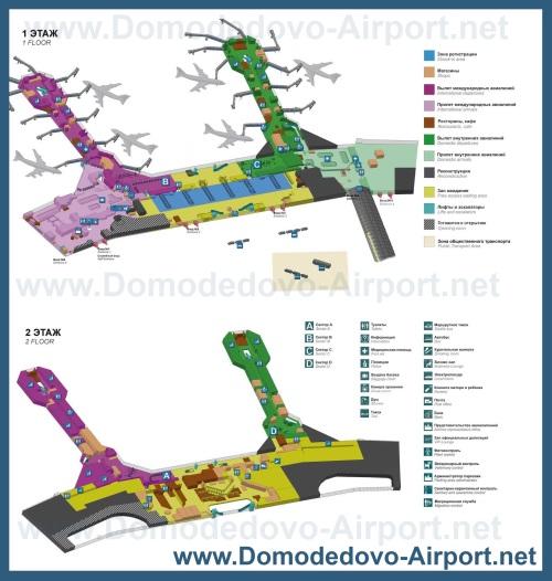 Подробный План терминалов аэропорта Домодедово